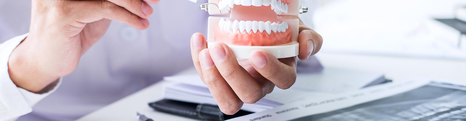 Dr. Heidl Anna